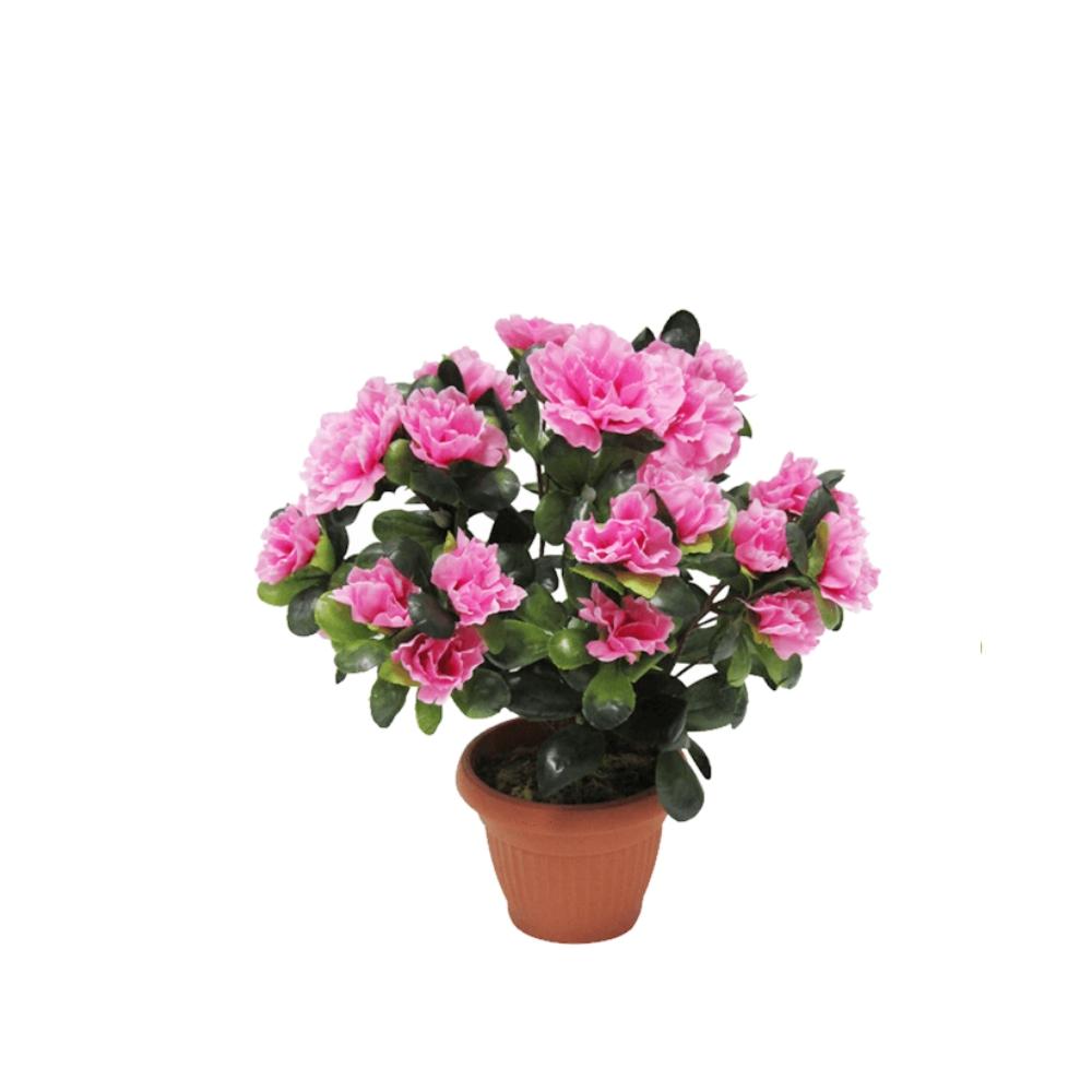 Доставка горшечных цветов купить искусственные цветы петербург