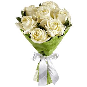 Белые розы 7 шт.
