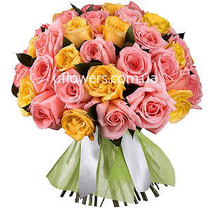 Розовые и желтые розы 51 шт.