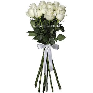 Белые розы элитные 11 шт.