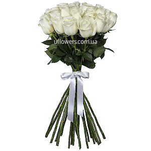 Белые розы элитные 21 шт.