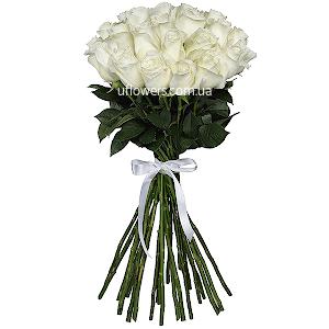 Белые розы элитные 25 шт.