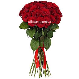 Красные розы элитные 25 шт.