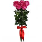 """Букет """"Розовые розы элитные 7 шт."""""""